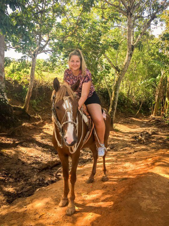 Un caballo!